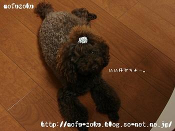 20110911_01.jpg
